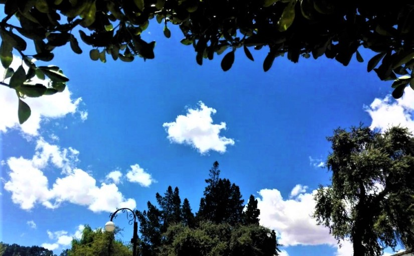 Mi nube favorita